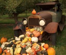 truck_with_squash